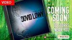 Dovid-lowy-f